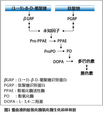 SLP肽聚糖检测试剂                  SLP Reagent Set