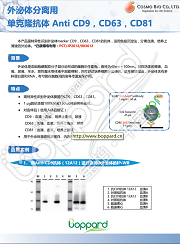 外泌体分离用单克隆抗体 Anti CD9,CD63,CD81
