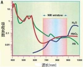 AkaLumineTM 近红外发光荧光素类似物 -WAKO和光纯药
