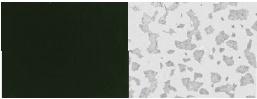 rBC2LCN-FITC (AiLecS1-FITC)-价格-厂家-供应商-wko富士胶片和光